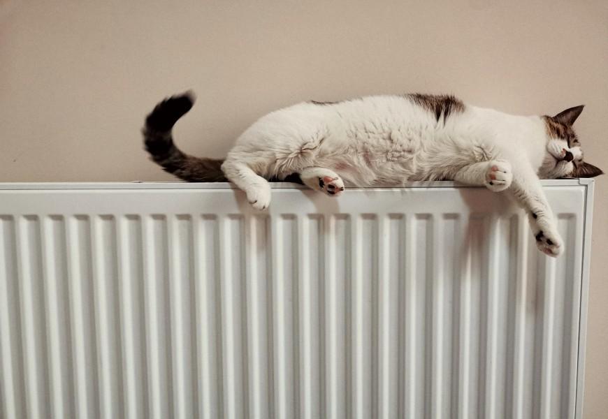 Come togliere la ruggine dal termosifone?