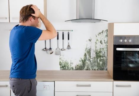 Come pulire le macchie di muffa dal muro